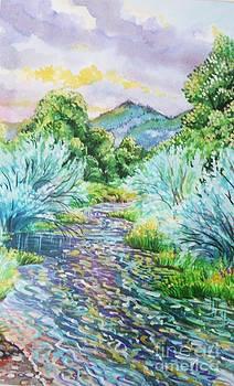 South Platt River by Annie Gibbons