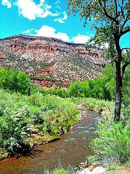 Southwest of Somewhere - New Mexico by Vicki Coover