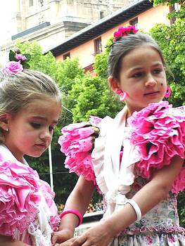 Spanish Fiesta by Sasha  Grebenyuk