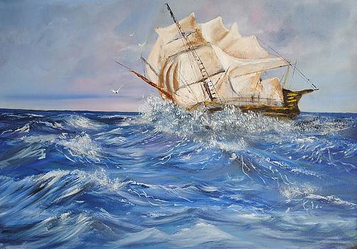 Spanish Galleon by James Higgins