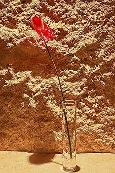 Kantilal Patel - Spathe Spadix in a round bud vase