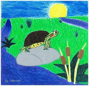 Artists With Autism Inc - Speedy Turtle