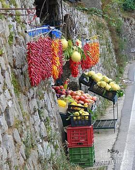 Patrick Witz - Spicy Fruit Stand