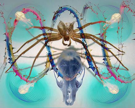 Adam Long - Spider DNA