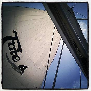 Spinnaker Sailing on a Beneteau 49 by Dustin K Ryan
