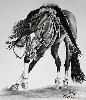 Spinner by Carolyn Valcourt