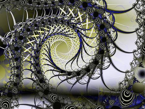 Frederic Durville - Spiral Web