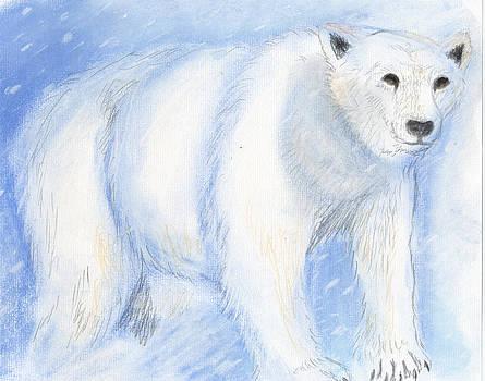 Janelle Schneider - Spirit Bear