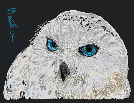 Spirit of Snow Owl by Helena Marais