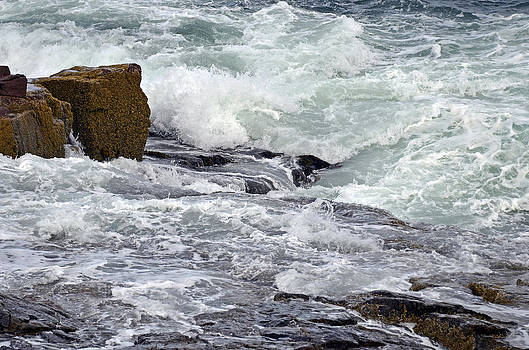 Splash of Sea Lace by Lynda Lehmann