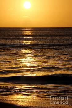 Sophie Vigneault - Splendid Sunset in the Caribbeans