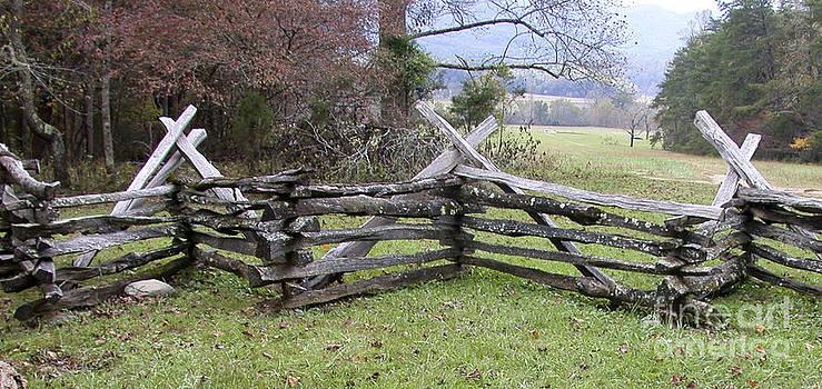 Tim Mulina - Split Rail Fence