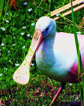 Spoonbill Number One by Doris Wood