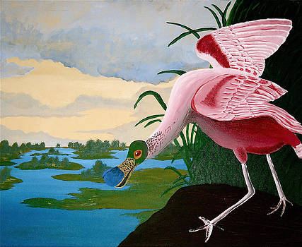 Spoonbill Reproduction by Amber Hennessey