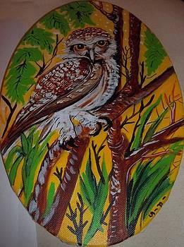 Spotted Owl by Iris Devadason