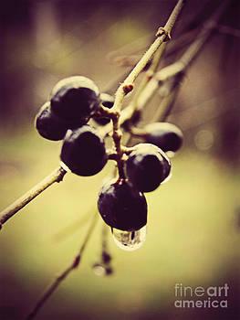 Emily Kelley - Spring Berries