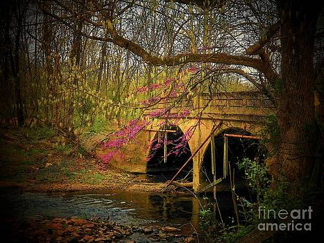 Spring Bridge by Joyce Kimble Smith