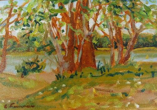 Spring by the stream  by Liliane Fournier