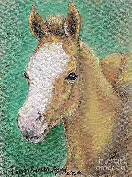Spring Foal by Jamey Balester