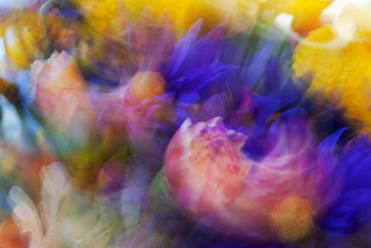 Spring life by Yuri Santin