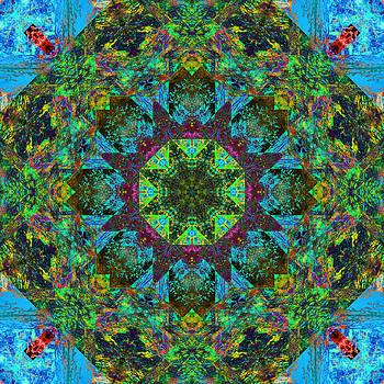 Betsy Jones - Spring Mandala