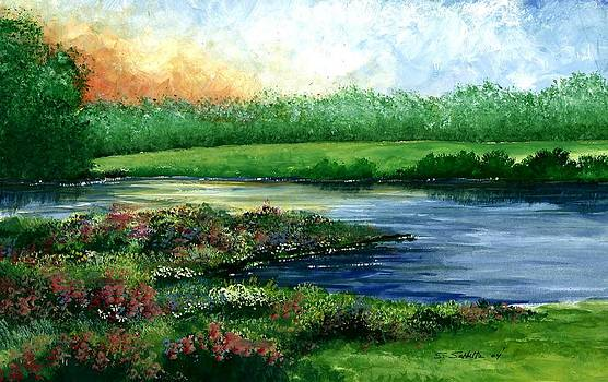 Spring Pond by Steven W Schultz