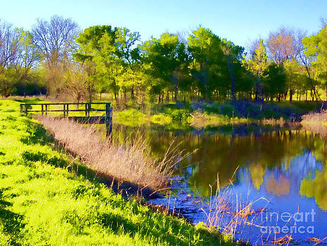Spring Reflections by Diana Cox