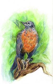 Ellen Miffitt - Spring Robin