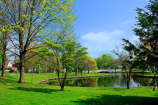 Spring Time at the Duck Pond by Cathy Leite Photography