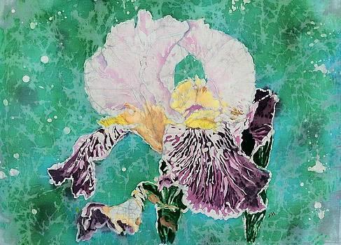 Spring Wonder by Jill Tsikerdanos