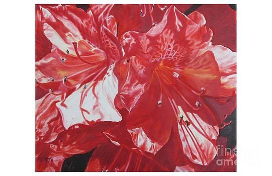 Spring's  Azaleas by Sabrina Tillman McGowens