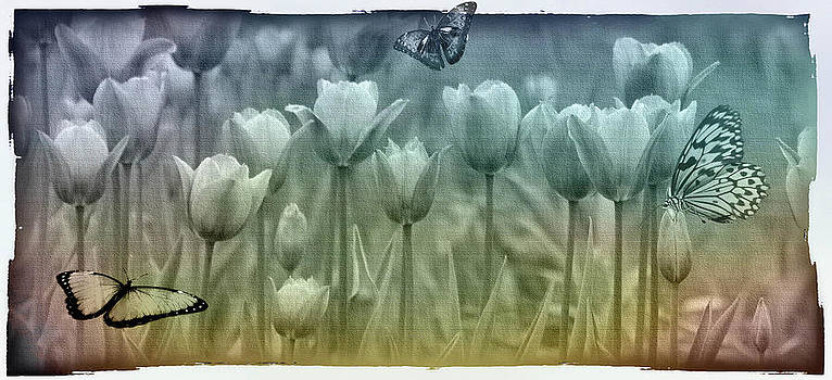 Springtime by Marie  Gale
