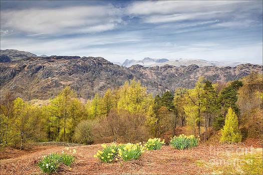 Springtime Tarn Howes by George Hodlin