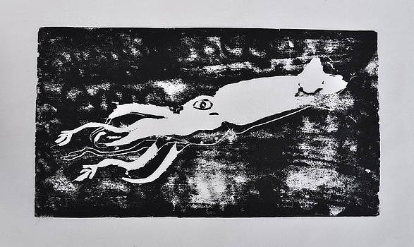 Squid by Jacqueline Cappadora