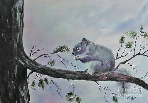 Peggy Miller - Squirrel