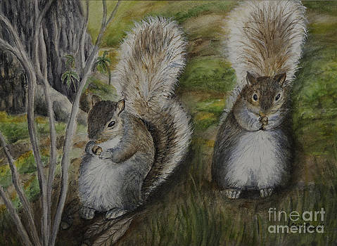 Squirrels Sharing Lunch by Gail Darnell
