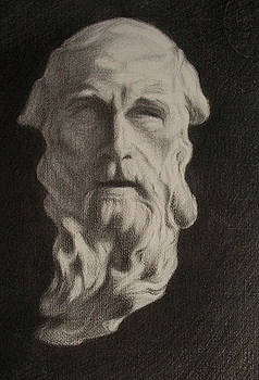 St. Jerome by Lucinda Coldrey