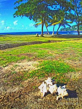 Gregory Dyer - St Lucia - Beach and Shells