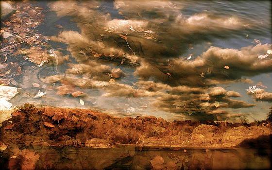 Stacked Autumn by David Rothschild