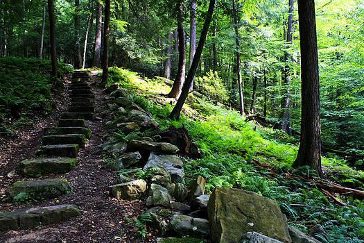 Darlene Bell - Stairs Of Stone