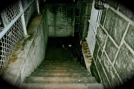 Stairway To...  by Brynn Ditsche
