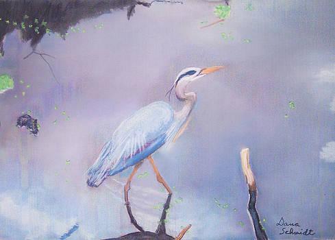 Stalking Great Blue Heron by Dana Schmidt