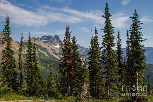 Standing Tall and Proud are Mount Gould and Subalpine Fir 2 by Katie LaSalle-Lowery
