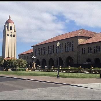 Stanford U #nofilter #fearthetree by Trey Jackson