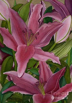 Star Gazer Lilies by Vikki Wicks