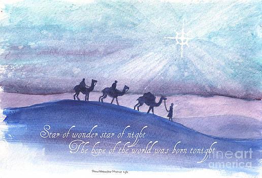Star of Wonder by Sara Alexander Munoz