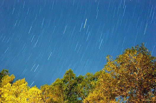 Kay Lovingood - Star Trails on a Blue Sky