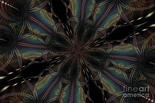 Star Warp Fractal by Shana Blake