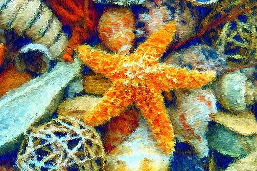 Carmen Del Valle - Starfish Impressionism