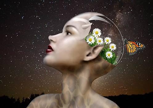 Stargazer by Will Crane